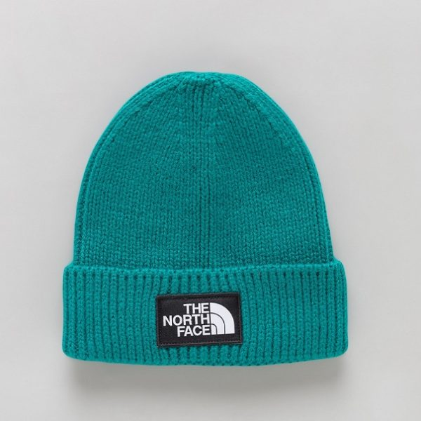 NOTRE-CHICAGO-THE-NORTH-FACE-TNF-LOGO-BOX-CUFFED-BEANIE-EVERGLADE-0794